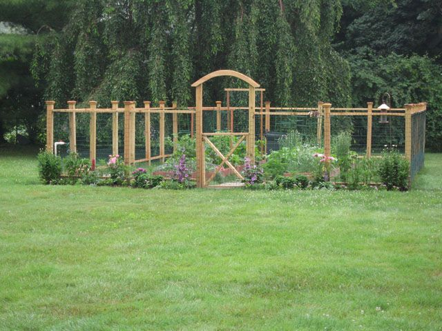 17 DIY Garden Fence Ideas to Keep Your Plants | Diy garden fence .