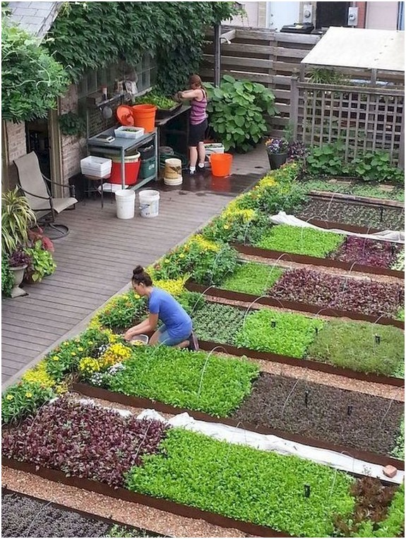 40 cozy small vegetable garden ideas on a budget 1 • Home And Gard