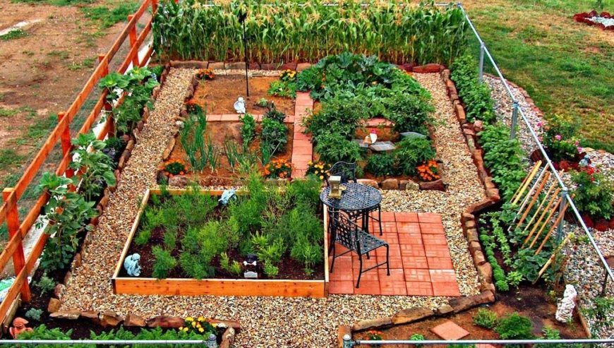 24 Fantastic Backyard Vegetable Garden Ide