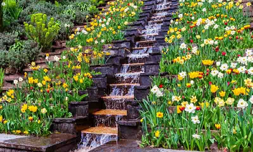 Find the Perfect Landscaping Idea for your Ya