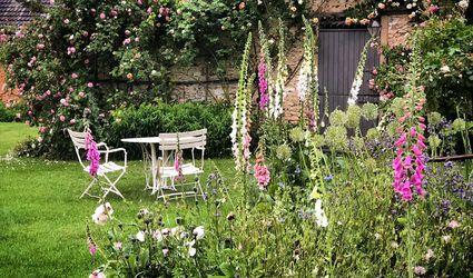 Gardening Ideas & Inspirati