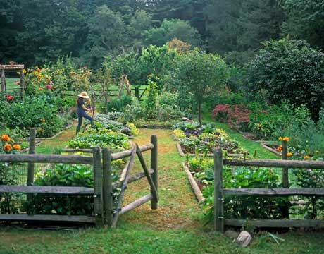 Garden Inspiration: Pinterest Finds - Green Gardeni