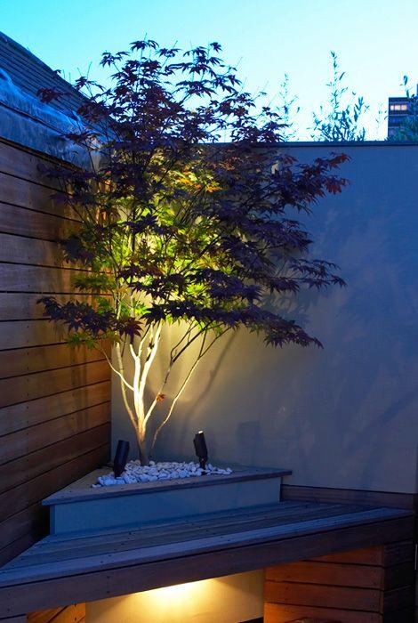 20 Dreamy Garden Lighting Ideas | Small garden design, Garden .