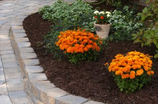 Outdoor Gardens by CST Pavers | Hardscaping Ideas by CST Pavers .