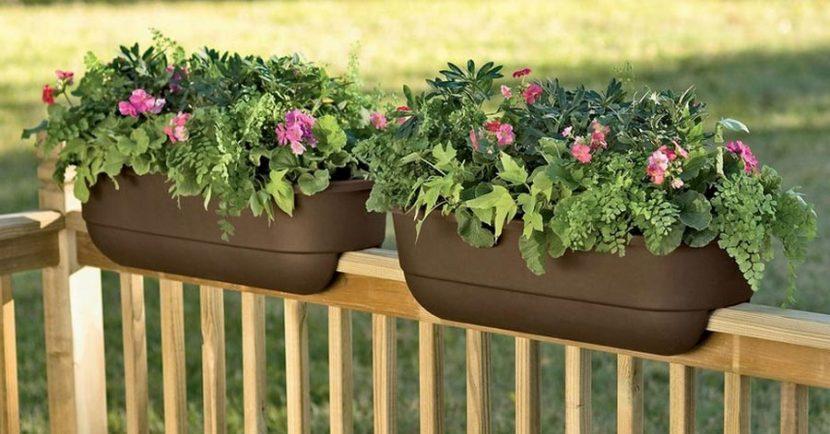 Best Garden Pots for Balconies | All for Bl