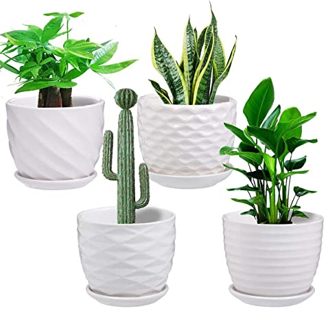 Amazon.com: White Plant pots - 4.7in Cylindrical Ceramic Planters .