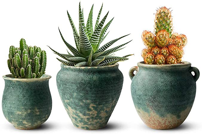 Amazon.com: FairyLavie 4.3 Inch Ceramic Flower Plant Pots, Retro .