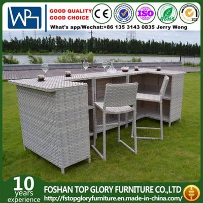 Garden Rattan Furniture Bar Set with Cushion for Outdoor (TG-6003 .