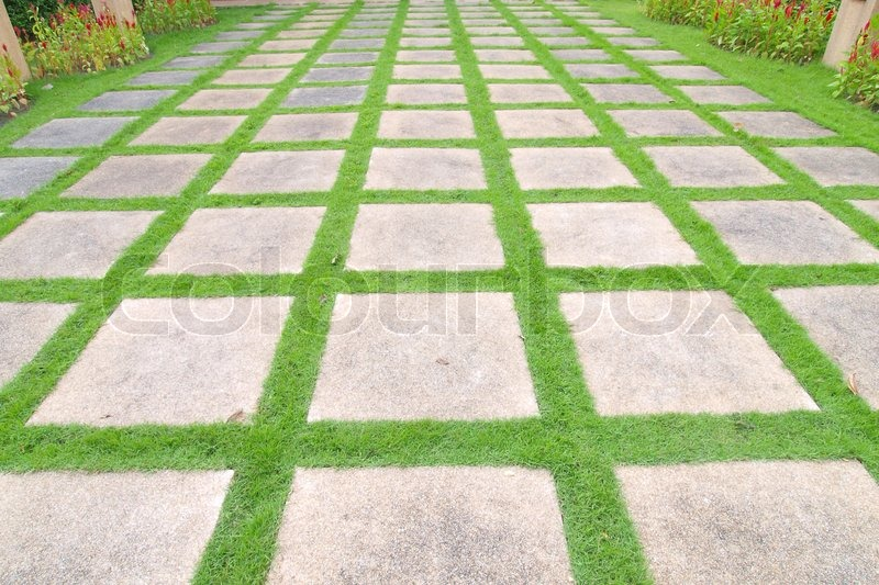 Beautiful grass tiles walk way in the ... | Stock image | Colourb