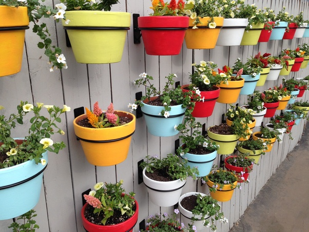 Can you share DIY ideas for decorating a garden wall? - Quo