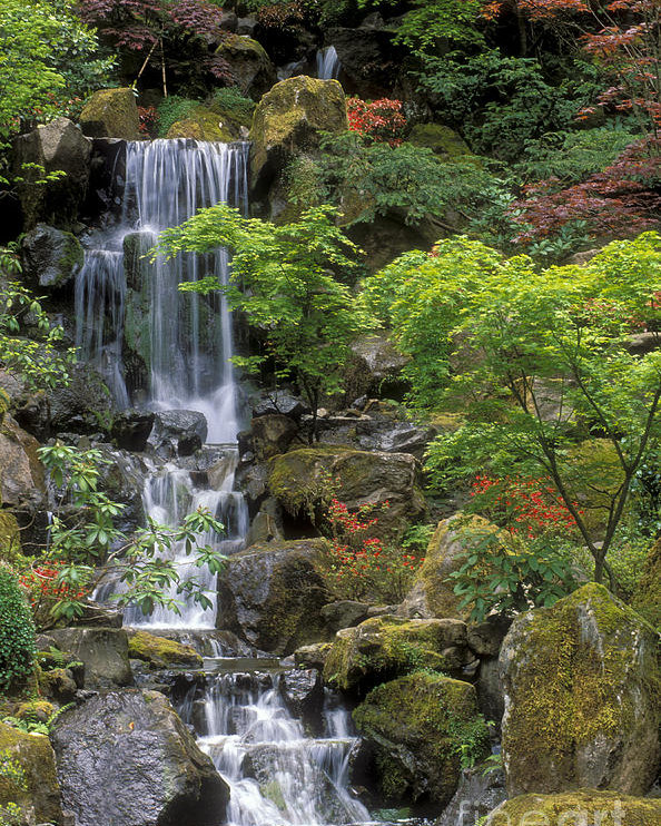 Japanese Garden Waterfall Poster by Sandra Bronste