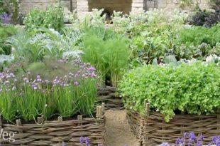 Herb Garden Design Ide