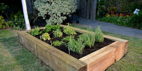 How to build your very own raised herb garden - D