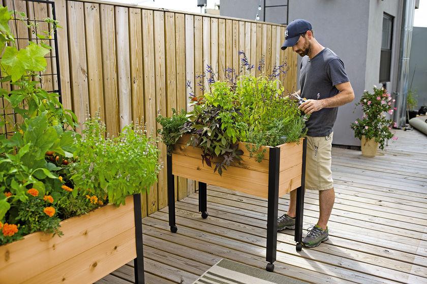 Herb Garden Designs with Plant Lists | Gardener's Supp