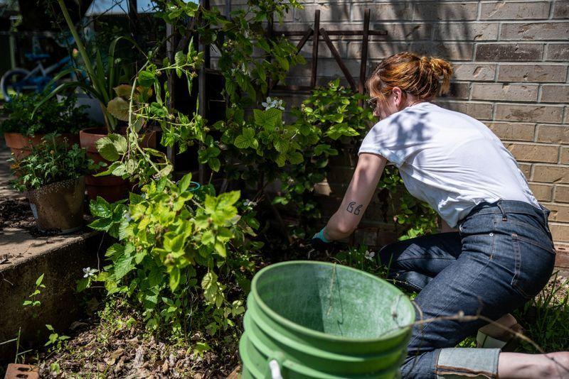 Home gardening blooms around the world during coronavirus lockdow
