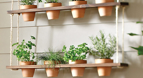How to Make an Indoor Herb Garden - The Home Dep