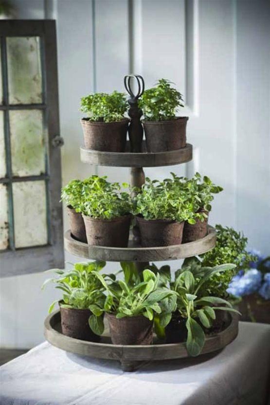 10 Easy DIY Herb Gardens | Diy herb garden, Herbs indoors, Small .