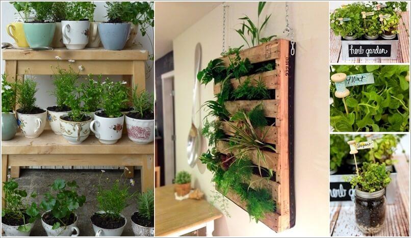 10 Cool DIY Ideas to Grow an Indoor Herb Gard