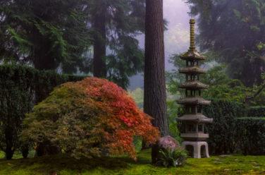 About Portland Japanese Garden – Portland Japanese Gard