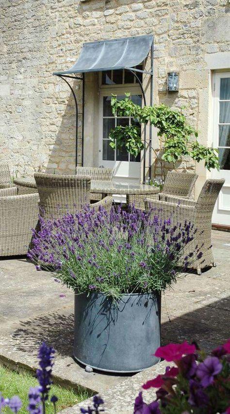 Windows shade | Large garden planters, Garden pots, Patio plante