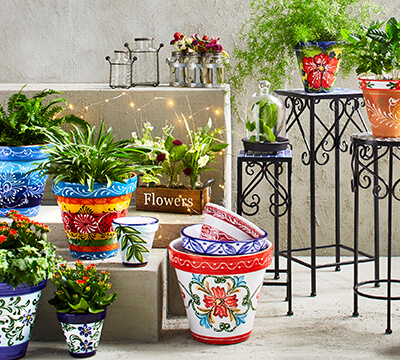 Outdoor Decor & Garden - Christmas Tree Shops and That! - Home .