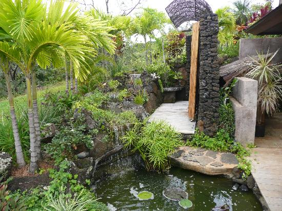 private outdoor shower, awesome! - Picture of The Palmwood .