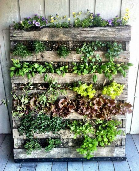 Make a Pallet Garden in 7 Easy Steps | Herb garden pallet, Pallets .
