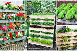 30 DIY Pallet Garden Projects to Update Your Gardens ⋆ DIY Craf