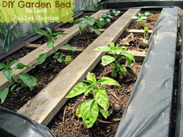 DIY Pallet Garden; How to make Raised Wood Pallet Garden B