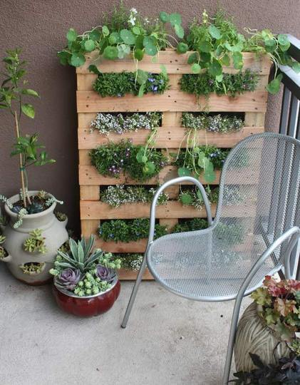 9 Patio Garden Ideas - How to Grow Plants on a Small Patio .