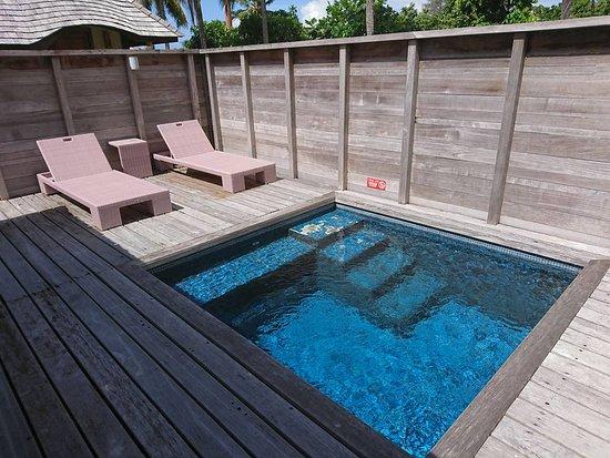 Private plunge pool - Picture of Hilton Moorea Lagoon Resort & Spa .