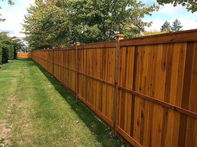 Cheapest Way to Build a Wood Privacy Fence | DIY 2020