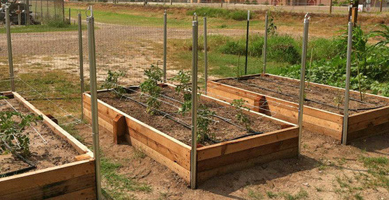 How to Build a Raised Garden Bed - grow your own vegetabl