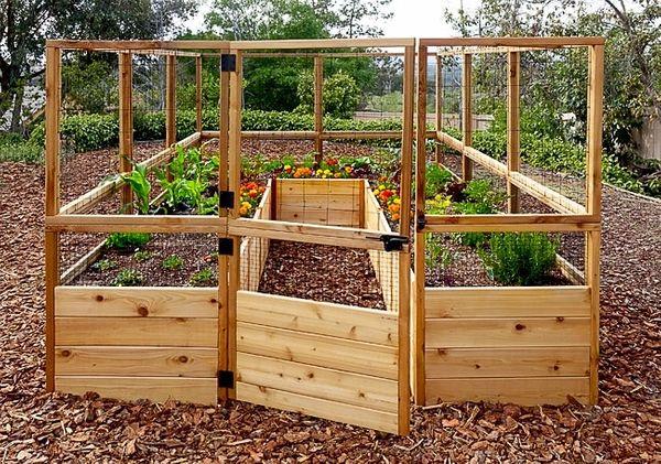 OLT Walk-in - 8'x12' Raised Bed Garden | Homegrown Harve