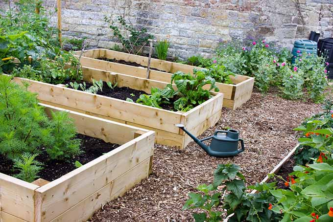 Raised Bed Gardening Benefits: What do they actually do? |