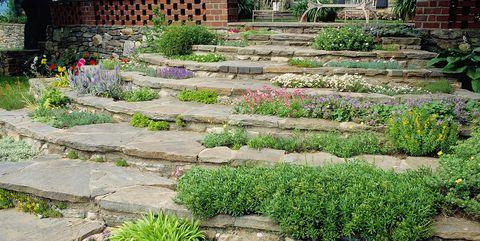 6 Best Rock Garden Ideas - Yard Landscaping with Roc