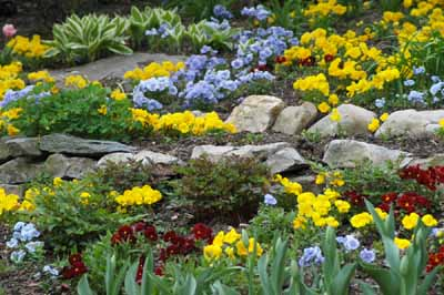 About Rock Gardens | HowStuffWor