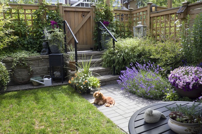4 Landscaping Ideas for a Small Backyard - ZING Blog by Quicken .