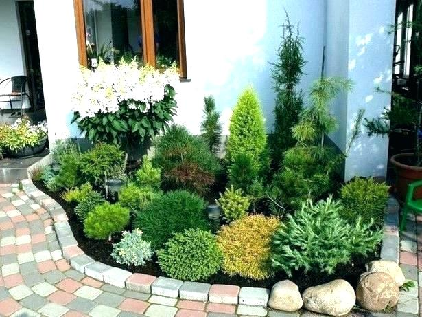 small backyard landscaping ideas on a budg