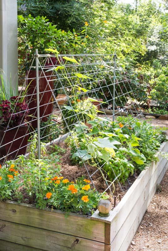Small Garden Ideas – Bonnie Plan