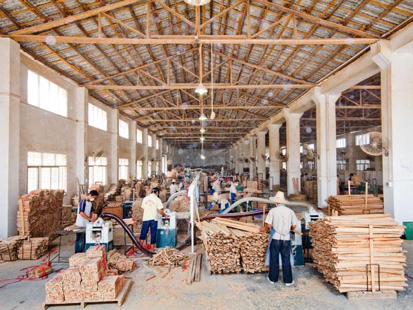 Wooden Workshop – Dadihang