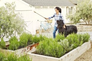 85 Best Backyard Ideas - Easy DIY Backyard Design Ti